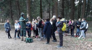 Découvertes en forêt pour les 6ème de Gannat